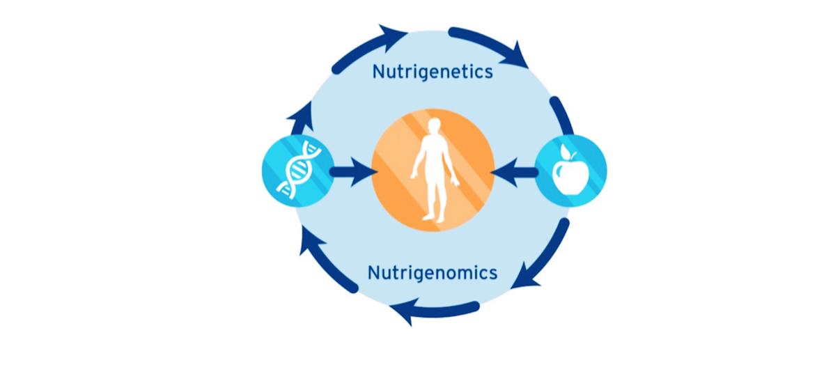 nutrigenetics-1