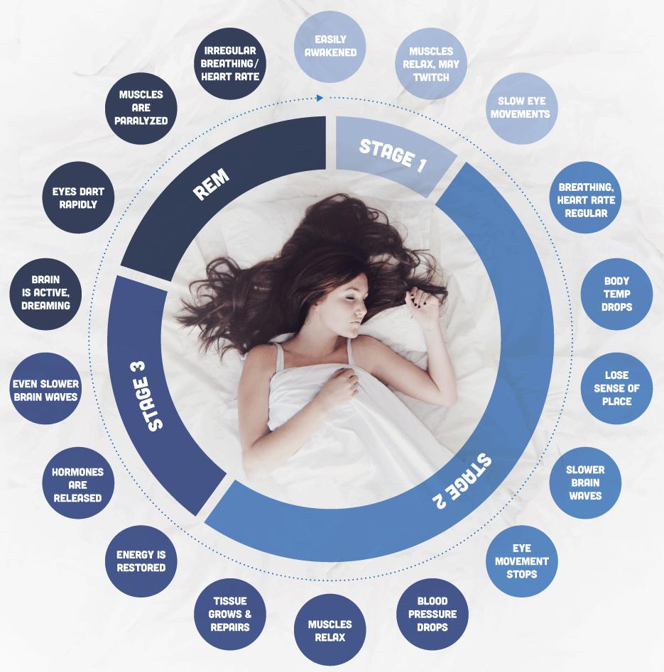 Sleep-stages