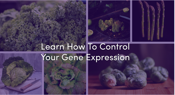 Control Your Genetic Destiny Via Epigenetics